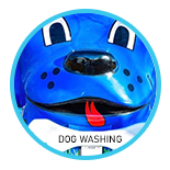 Hydrodog Mobile Dog Grooming Service : Dog Washing